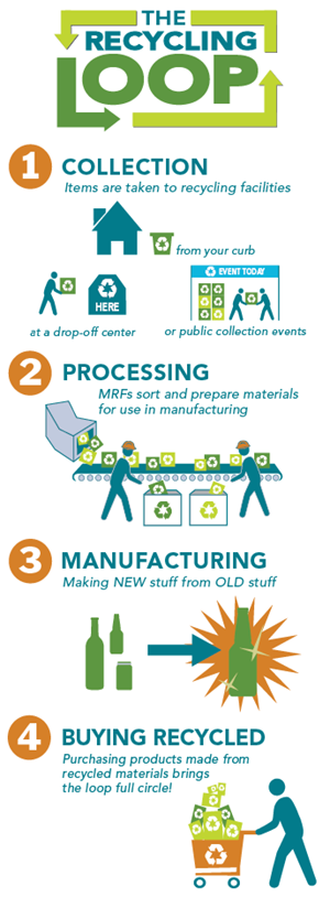 Infographic Illustration of the recycling process: collection, processing, manufacturing and buying recycled; the four steps to completing the recycling loop. Text reads: The Recycling Loop 1.	Collection: Items are taken to recycling facilities 2.	Processing: MRFs sort and prepare materials for use in manufacturing 3.	Manufacturing: Making NEW stuff from OLD stuff 4.	Buying Recycled: Purchasing products made from recycled materials brings the loop full circle!